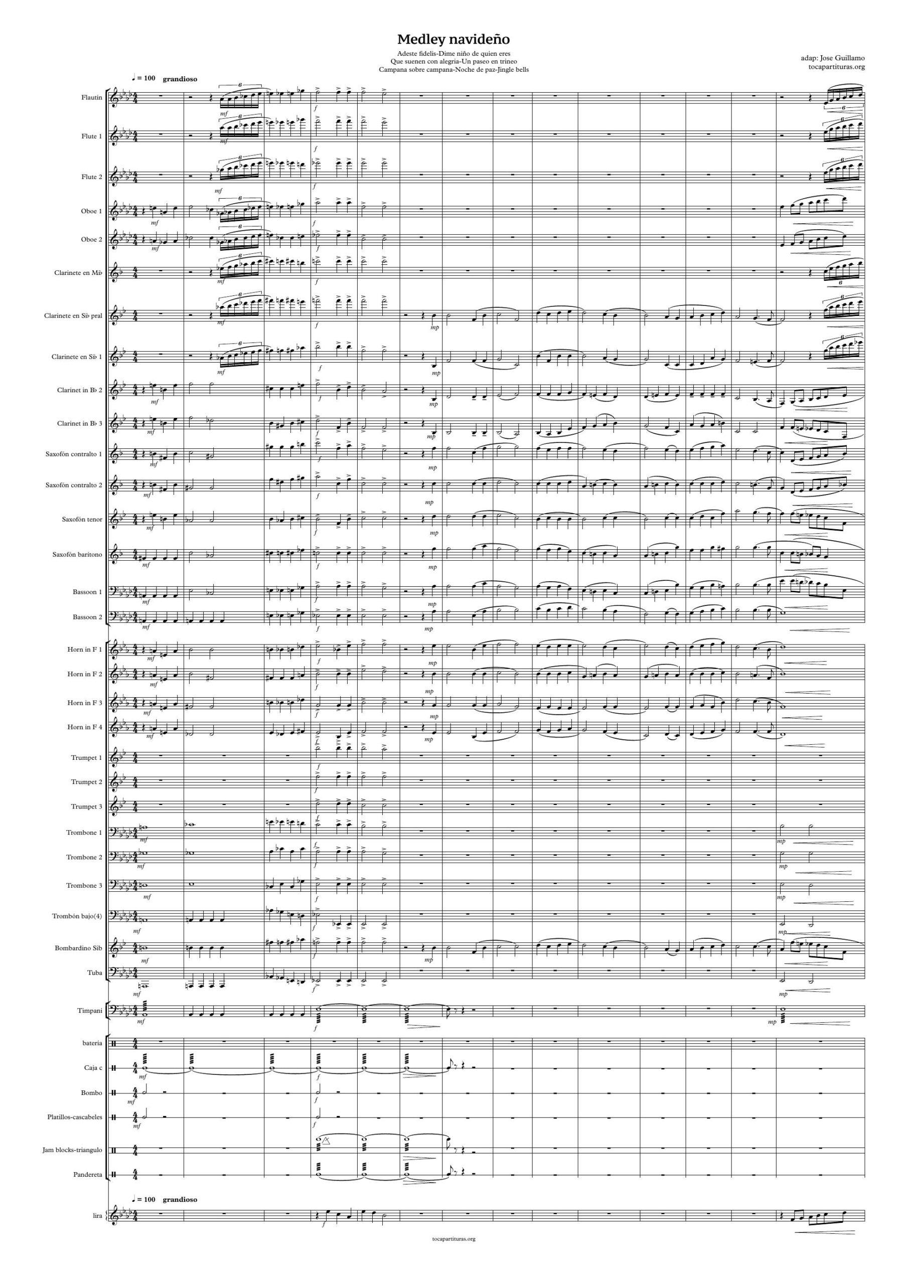 Medley Villancicos Concierto Banda de Música