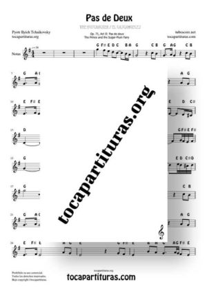 Pas de Deux by Chaikovski Notes Sheet Music in G Major (Sol) for Treble Clef (Violín, Oboe, Flute, Recorder…)
