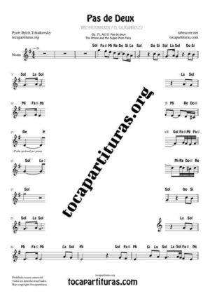Pas de Deux de Chaikovski Partitura PDF y MIDI en Sol Mayor (G) con Notas en letra en Clave de Sol (Flauta, Violin, Oboe, Trompeta, Clarinete…)