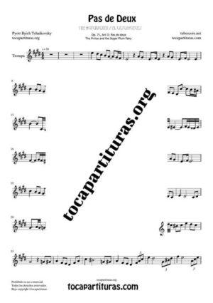 Pas de Deux de Chaikovski Partitura PDF y MIDI de Trompa (French Horn) en Mi Mayor (E) Tonalidad Original