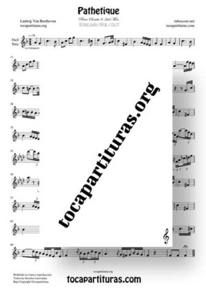Pathetique de Beethoven Partitura de Flauta Dulce (Tonalidad Fácil)