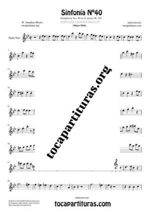 Sinfonía n.º 40 (Mozart) Partitura de Flauta Travesera (Flute)